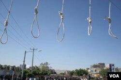 Приготовленная виселица для казни. Иран.