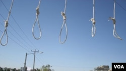 Public hangings are common in Iran.