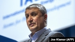Mohammad Eslami, the chief of the Atomic Energy Organization of Iran (file photo)