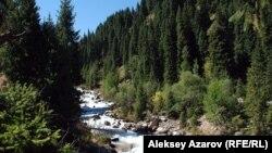 Іле Алатауы ұлттық паркіндегі Ақсай шатқалы. (Көрнекі сурет).