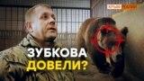 Зубков закроет «Тайган» и застрелит медведей? | Крым.Реалии ТВ (видео)