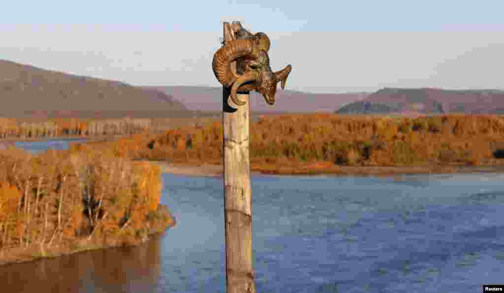 "A sheep's head marks a shamanic site along the Yenisei River. Shamanic belief holds that, just as people are nourished by eating the flesh of animals, so the spirits of wild animals are nourished by the death of humans in the wilderness. ""If a person is lost in the forest or drowns in a river, then the hunters think that the spirits will have been reimbursed for game or fish taken."""