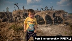 Four-year-old Igor poses near his family's reindeer herd in the Yamalo-Nenets Autonomous District.