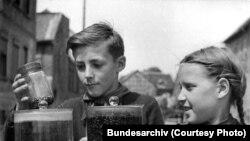 Пионеры собирают колорадских жуков, 1952 год
