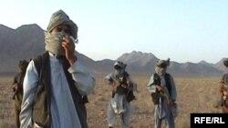 Отряд талибов в горах западной афганской провинции Фарах