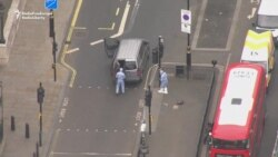 Forensic Team Gathers Evidence After London Terror Arrest