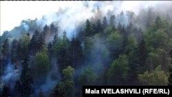 ხანძარი აწყურის ტყეში, ბორჯომის ხეობა
