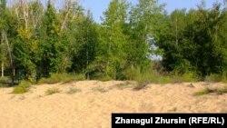 Песочные дюны в окрестностях Шалкара. Актюбинская область, 13 августа 2013 года.