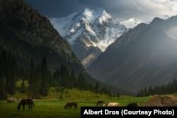 """""""Кыялдар өрөөнү"""". Фотограф Алберт Дростун эмгеги. Кыргызстан."""