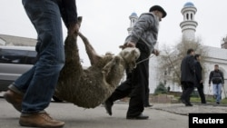 Thousands of sheep have fallen ill and died in Uzbekistan and Kyrgyzstan in recent weeks. (file photo)
