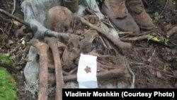 Поисковики-добровольцы до сих пор находят погибших в годы войны