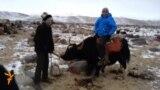 Непростая жизнь кыргызов на Памире. Часть II