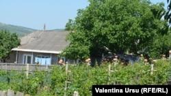Vedere a satului Iurceni, r. Nisporeni