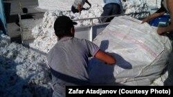 Кыргызстандагы пахта жыйноо учуру.