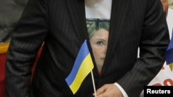 An opposition deputy wears a t-shirt in support of Yulia Tymoshenko before a session of parliament in Kyiv on November 19, 2013.