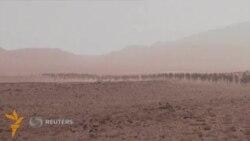 Марокашда марафончилар чўлда 90 километрдан ортиқ масофани босиб ўтади