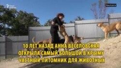 Приют для животных Анны Веселовской