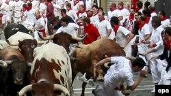"""Участников забега с быками называют """"мозо"""""""
