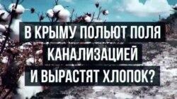 Засуха побеждена? Российские технологии для Крыма (видео)