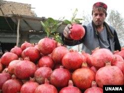 آرشیف، محصولات زراعتی افغانستان در نمایشگاه بادامباغ