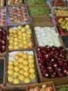 د پاکستان د محصولاتو ادارې په رسمي توګه د دې په اړهیو نوټیفیکشن هم جاري کړی دی.