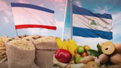 Пшеница для Никарагуа. Крым собирается поставлять товары за океан | Крымское утро