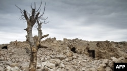 Pemë arre, Siri