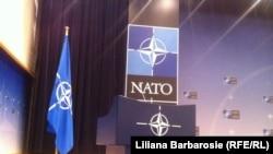 НАТО. Иллюстрация