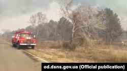 Пожежа в заповіднику в Одеській області, 19 березня 2019 року