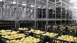 Ըստ արտահանողների, ՌԴ-ում հայկական ապրանքի իրացման խնդիրներից խուսափելու համար պետք է գործընթացը ճիշտ կազմակերպել