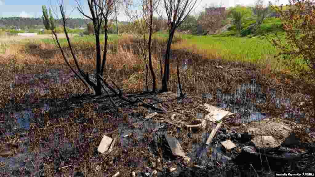 Нижній Сергіївський в районі вулиці Ковильної перетворився на засмічене болото з випаленим очеретом
