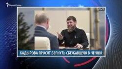 Видеоновости Кавказа 25 ноября