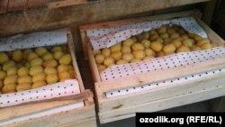 Торговцы на рынках Коканда сложили ящики с абрикосами под прилавки.