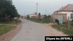 Бағыс ауылындағы асфальт төселген көшелердің бірі. Сарыағаш ауданы. Оңтүстік Қазақстан облысы. 16 мамыр 2018 жыл.