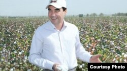 Türkmenistanyň prezidenti Gurbanguly Berdimuhamedow pagta mevdanynda. Arhiw suraty.