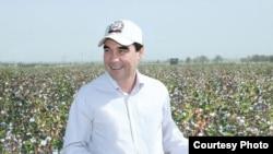 Türkmenistanyň prezidenti Gurbanguly Berdimuhamedow pagta meýdanynda