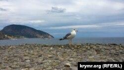 Крим, Аю-Даг, ілюстраційне фото