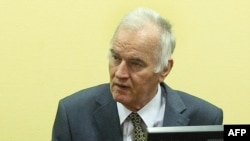 Former Bosnian Serb military leader Ratko Mladic during a war crimes hearing at The Hague. (file photo)