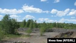 Когда-то Киселевск был зеленым городом...