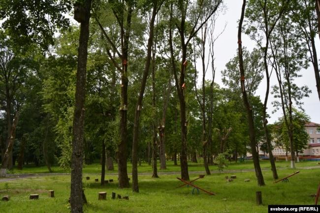 Ускраіна парку ў Станькаве