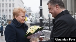 Lithuanian President Dalia Grybauskaite and her Ukrainian counterpart, Petro Poroshenko, meet in Kyiv on November 24.