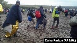 Migranti kod Berkasova, oktobar 2015
