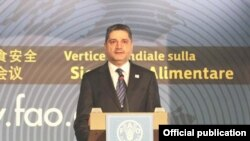 Armenia -- Prime Minister Tigran Sarkisian addresses the UN Food and Agriculture Organization (FAO) sumit in Rome on November 17, 2009.