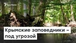 16x9 Image