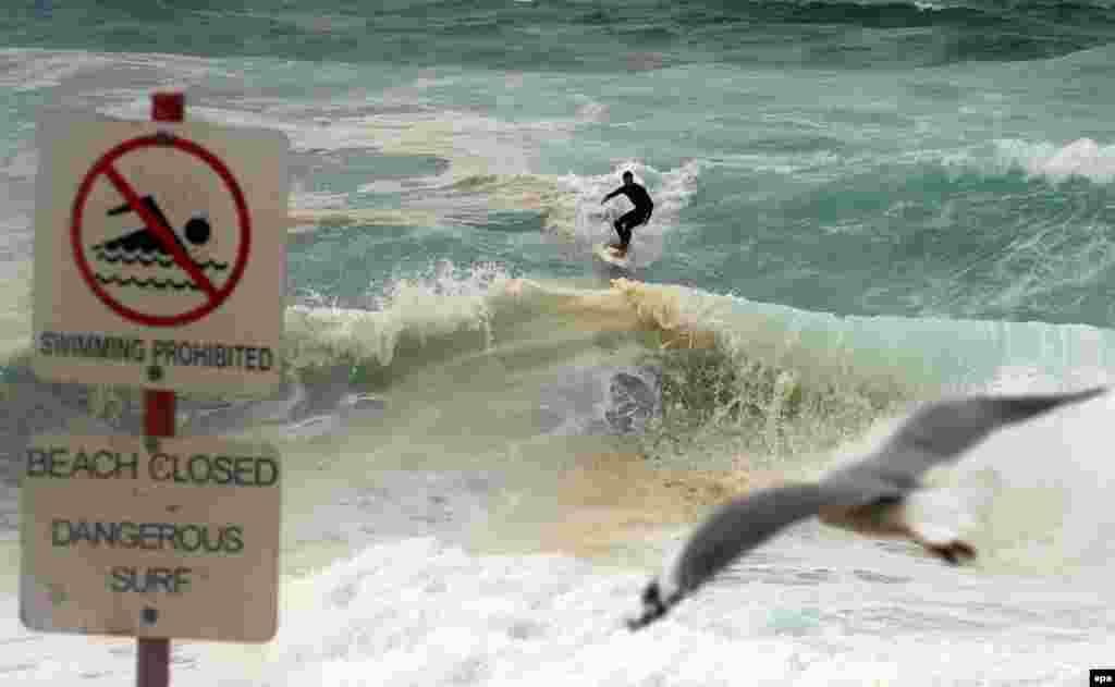 В Австралии - серфинг