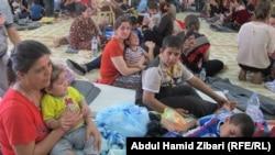 نازحون من الموصل الى اربيل