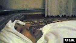 Покойный Азамат Каримбаев. Фото сделано в его доме накануне похорон. Поселок Шубарши, 27 декабря 2009 года.