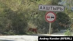 Дорога в Ахштырь. Фото Андрея Королева
