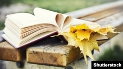 Kitap we güýz ýapragy