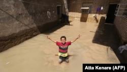 هشدار در مورد بروز بیماریهای هاری، سالک و التور و گال در خوزستان